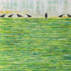 17384 BirdsOnAWetLawn-thumb
