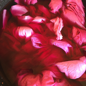 Fabric cooking in cochineal dye